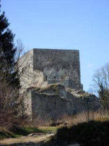 vitkuv-kamen-1